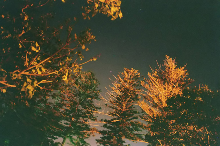 Red Planet and Golden Trees - by: Aymen Ibrahem (Canon 28mm, F2.8, 5 second exposure, Kodak Ultra 400)