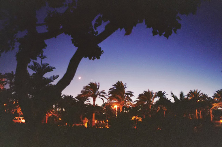 Planets and Trees 1 - by: Aymen Ibrahem (Canon Camera, Kodak Ultra 400 film, 1 second exposure)