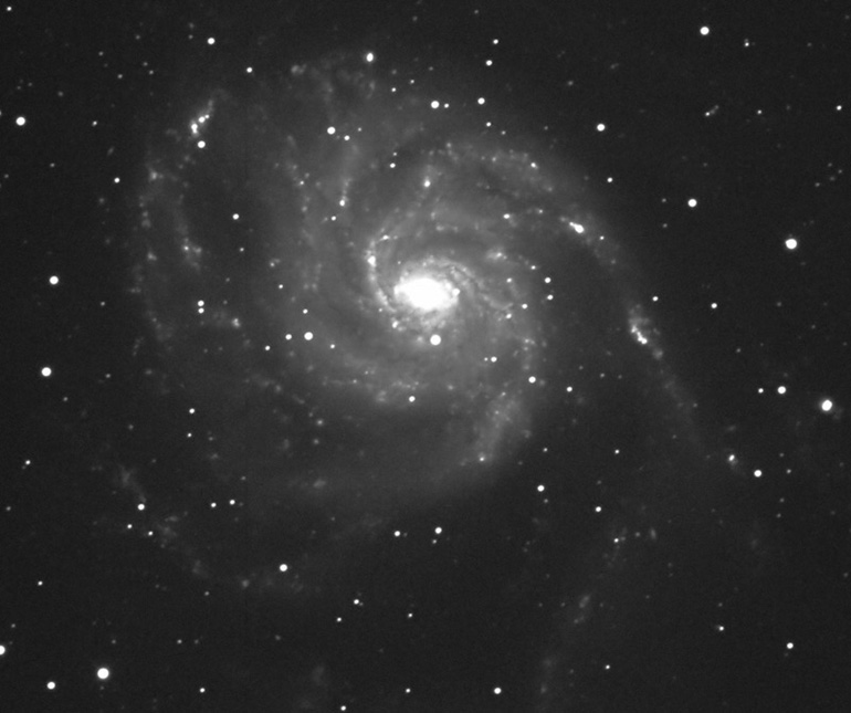Galaxy M101 by Ricky Murphy. 20 inch RC telescope, STL-11000 camera, 5 minute exposure